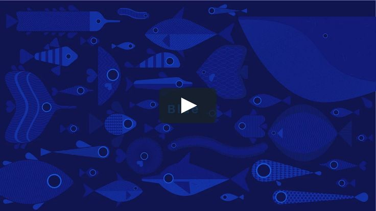 """""""Blue is the world's favourite colour""""  We worked with CNN and Dr. James Fox to produce a film for their Colour Scope series.   See the website…"""