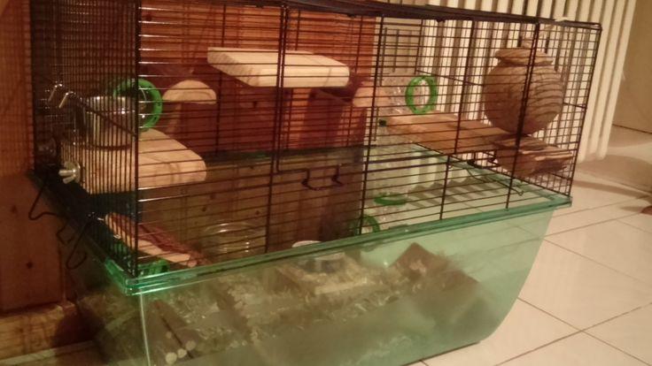 """La cage gerbille/hamster """"habitat XL"""" est conseillée pour les hamsters et les gerbillesmais également adaptée aux autres rongeurs. Elle est constituée d'une partie supérieure qui est une cage e..."""
