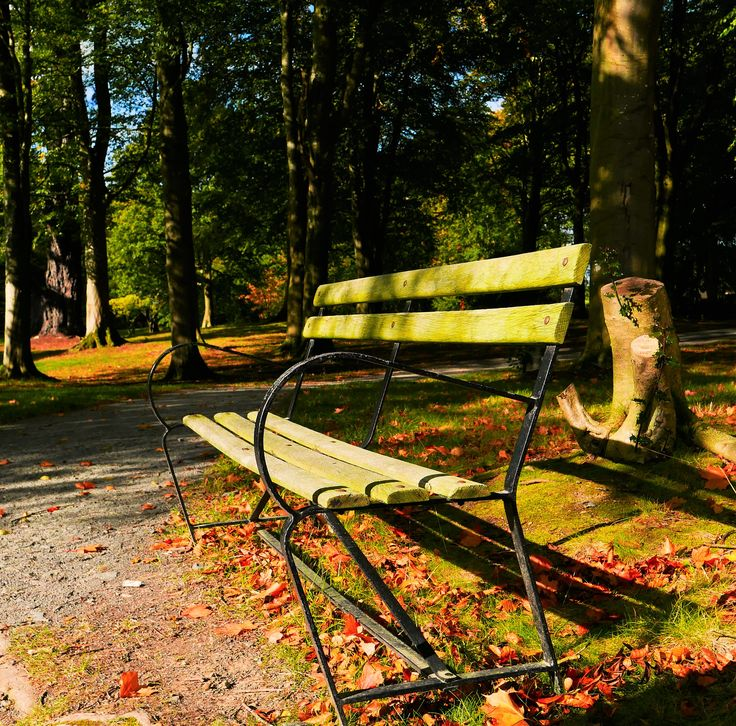 It was a day for sun-kissed benches at Rowallane today!