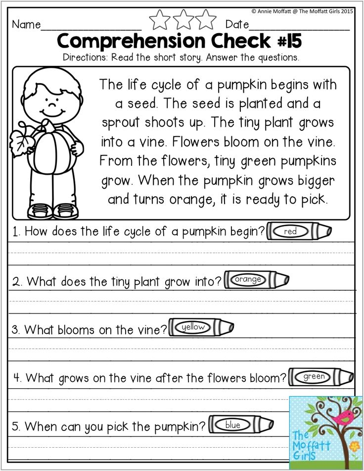 1000 Images About Education Writing And Reading On