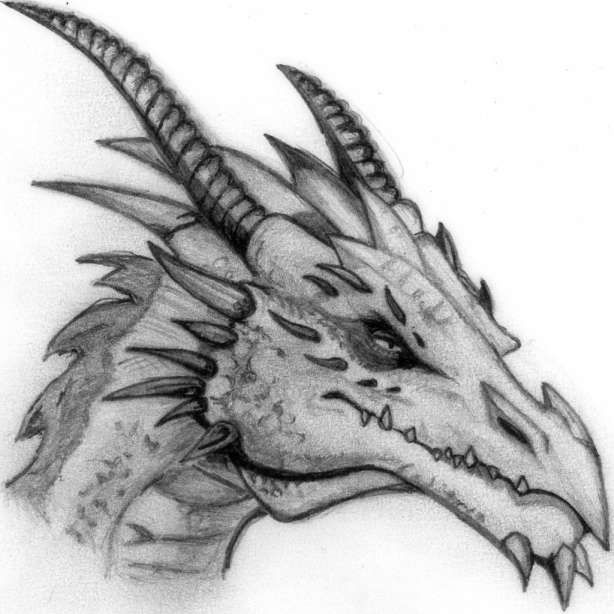 d04325a255711b9753074246161aa0c8 » Cool Dragon Drawing