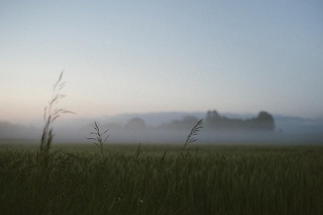 download Логистика в сельском хозяйстве: методология и концепция