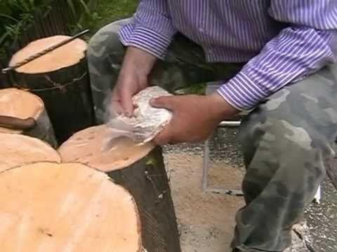 Pestovanie hlivy ustricovej na dreve v amatérskych podmienkach.Spôsob prípravy dreva a uloženie sadby do dreva.