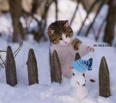 Items similar to Winter Cat Art // Winter Scene Snow ...  |Winter Scenes With Cats