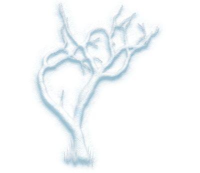 Blbinec: Snow tree