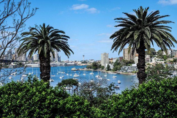Wendy Whiteley garden in Lavender Bay, Sydney