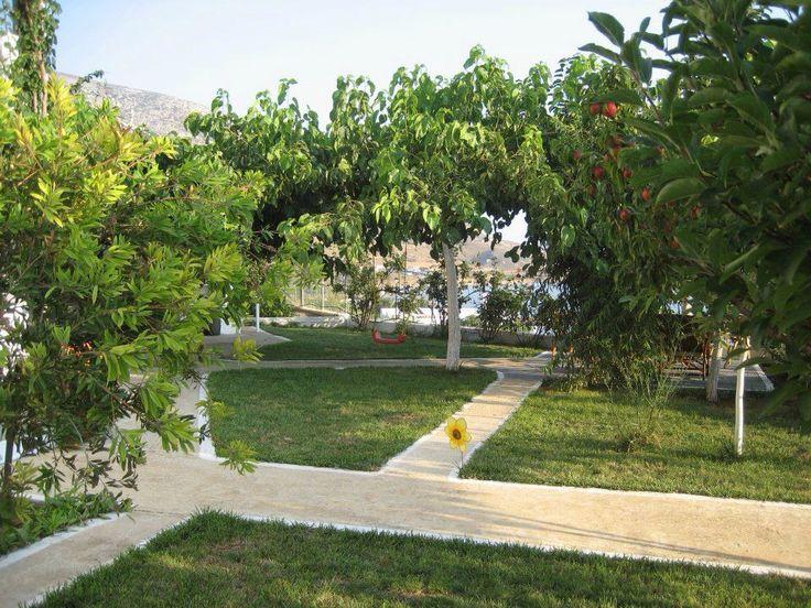 Thalassia Studios Skyros Greece. Apartments with superb sea views at Kalamitsa beach. Thalassia.gr