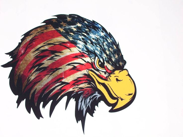 Angry American Flag Eagle Head RV motorhome Wall Window Graphic Decal decals Graphics Car Truck Cup 4x4 Sticker Jeep camper by SuperbDecalsLLC on Etsy