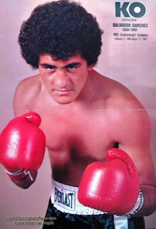 Image result for boxer mexicano