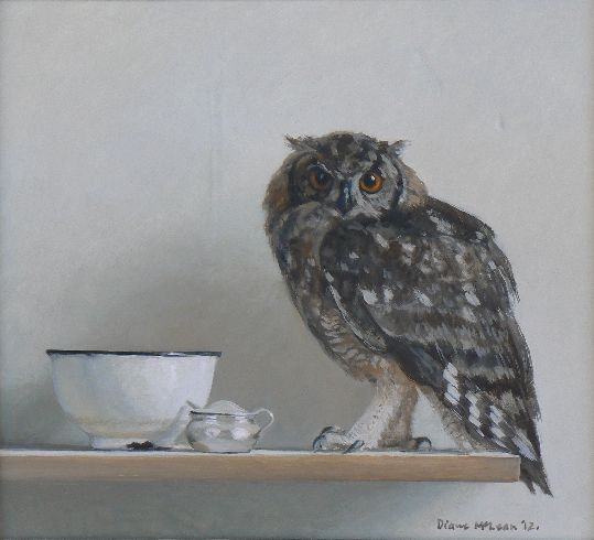 Diane McLean Still life with spotted eagle owl (2012), oil on board, 305 x 335 mm.
