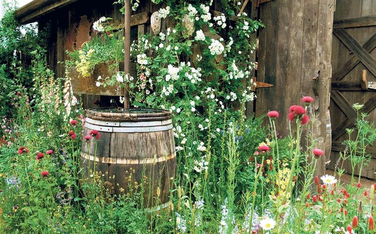 Our gardening agony aunt answers your queries.This week: mosquitos in water   butts and a compost row