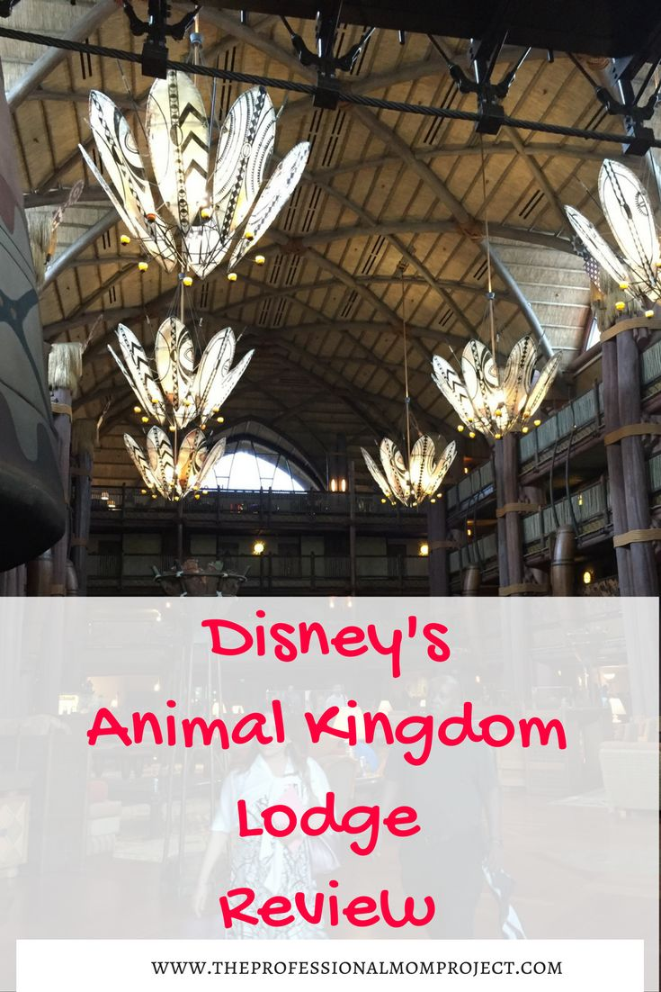 Thinking of visiting Disney World? Check out my Disney's Animal Kingdom Lodge review to see if it's the right hotel for you and your family. Disney travel tips | Visiting Disney | Disney hotels | #Disneyworld #AnimalKingdomLodge #familytravel