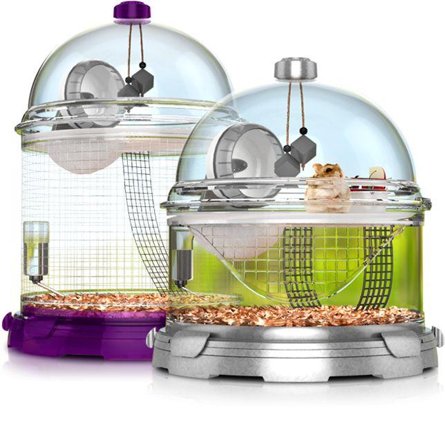 Classroom Pet Ideas ~ Ideas about classroom pets on pinterest class pet