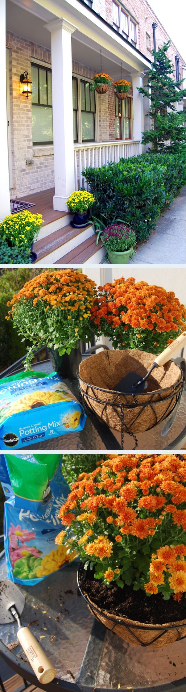 276 best expert answers images on pinterest diy household tips diy fall porch decor mum hanging baskets the home depot community sciox Choice Image