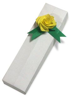 Origami A Long Box