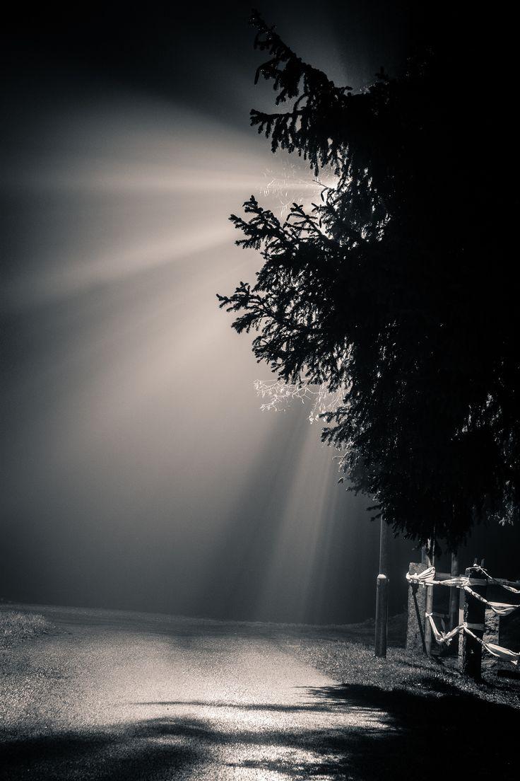 Light fog by Robert Rieger on 500px