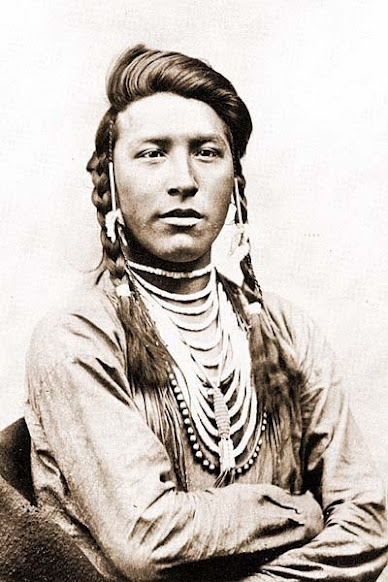 Sits Down Spotted - Crow - 1881. Odd how many photographs of Native Americans can be easily found, often in traditional dress from times when their numbers were being rapidly reduced. Sad history.