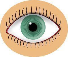 La cura de la visión es definitiva! Toma esto antes de dormir y observa como en la mañana tendrás 80% más de vista! No te miento!