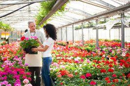 ogrodnik usługi ogrodnicze