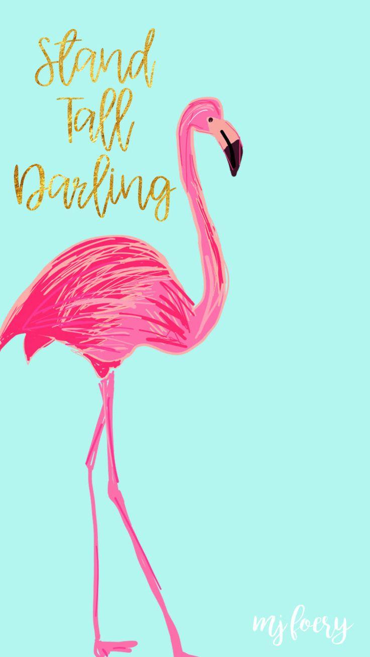 Wallpaper Iphone Black Flamingo Novocom Top