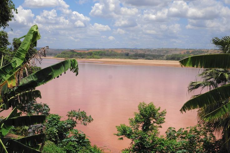 Brazil mine spill / Since millions of gallons of mining waste burst from an inland iron ore mine a month ago, 300 miles of the Rio Doce stretching to the Atlantic Ocean has turned a Martian shade of bright orange, and the deadly consequences for residents and wildlife are just beginning to emerge.