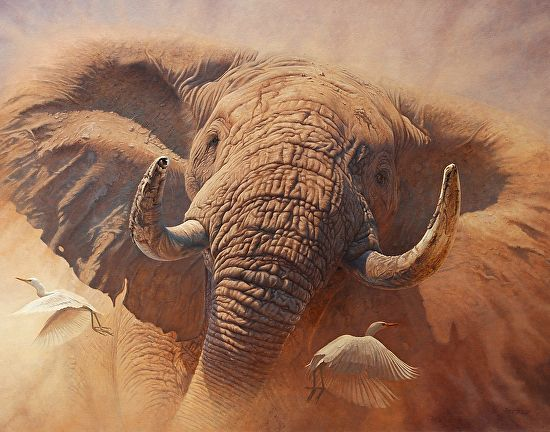 Matimba - One with power and strength - Oil