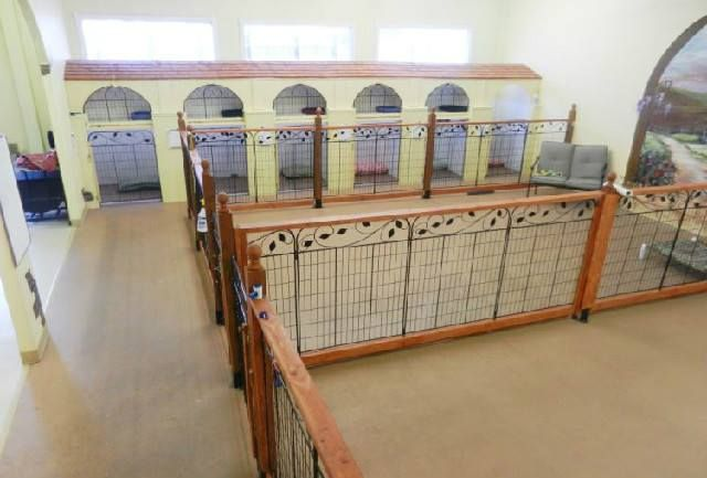 (2) Share Your Canine Housing Ideas
