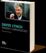 """""""Perdersi è meraviglioso"""" David Lynch"""
