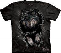 Breakthrough Wolf - The Mountain