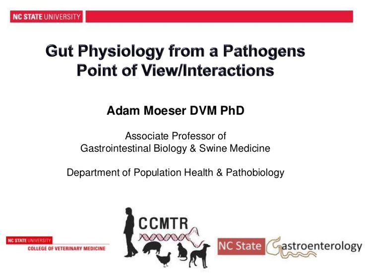Gut Physiology from a Pathogens Point of View - Dr. Adam Moeser, North Carolina State University, from the 2014 Boehringer Ingelheim North Carolina Swine Healt…