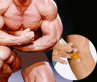 59 best images about muscles - body building on pinterest, Muscles