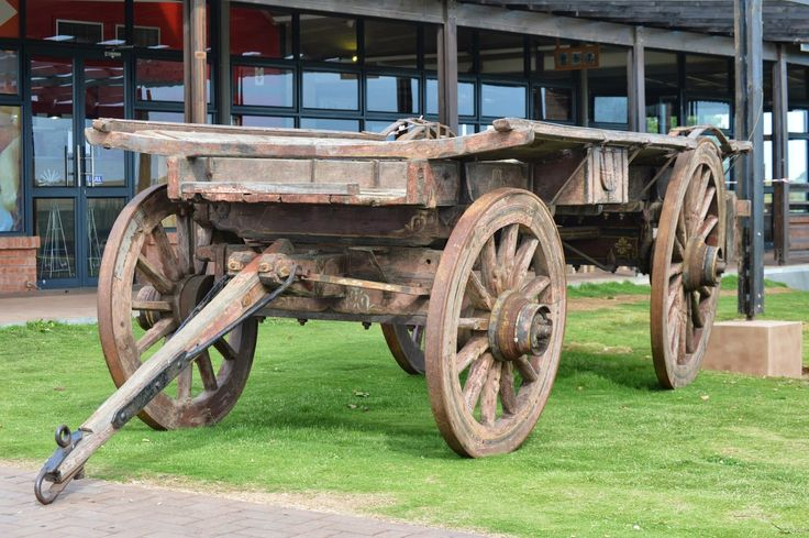 In South Africa, the ox-wagon was adopted as an Afrikaner cultural icon. Ox-wagons are typically drawn by teams of oxen, harnessed in pairs. The oxen were given names that would give and indication of their character.