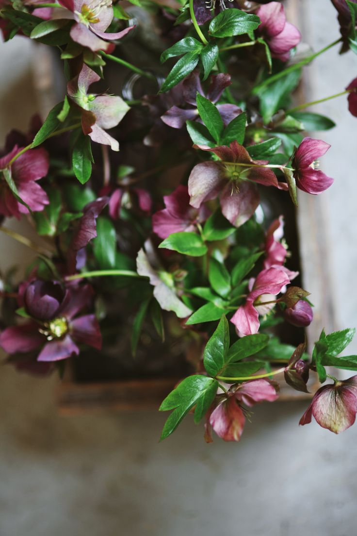 Kinfolk Dublin 2015  Beneath the Suface  Flowers by The Informal Florist  Photo by Rincy Koshy
