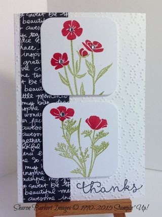 Wild About Flowers note card long