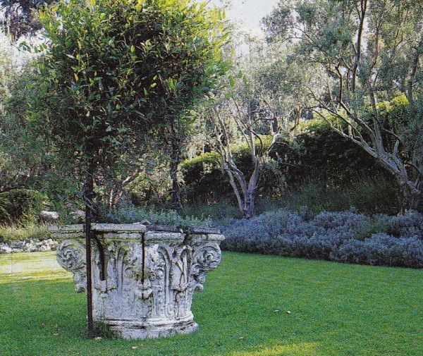 Garden Santa Barbara Saladino
