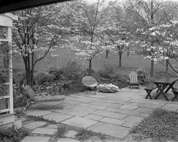 A secluded patio set in a grove of dogwood trees. #ArchivesMonth Lindsley garden, unidentified location, c. 1958. Molly Adams, photographer. Archives of American Gardens, Smithsonian Institution.