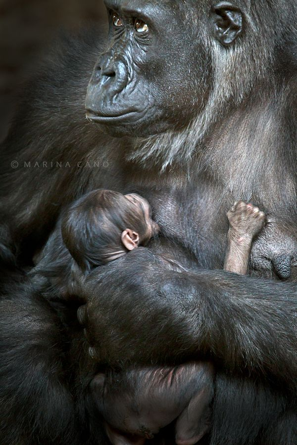 A few days with Mom by Marina Cano, via 500px