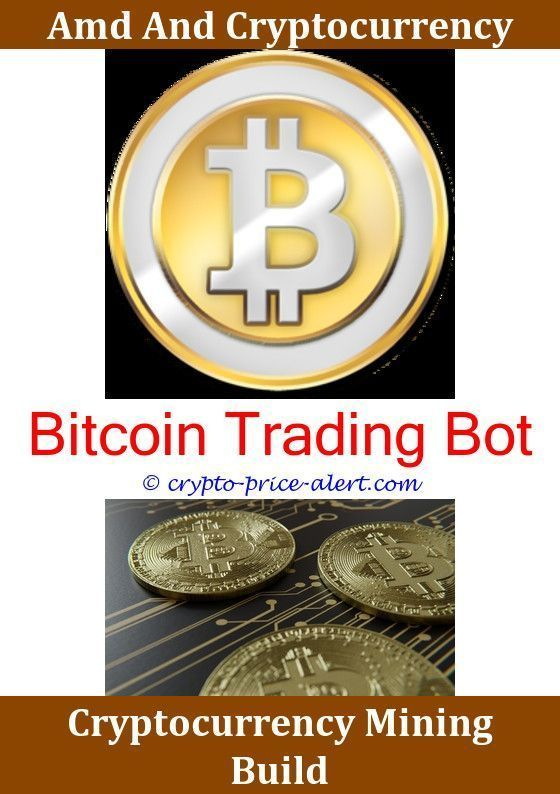 Bitcoin Worth In 5 Years How To Turn Your Bitcoin Into Cash Bitcoin -