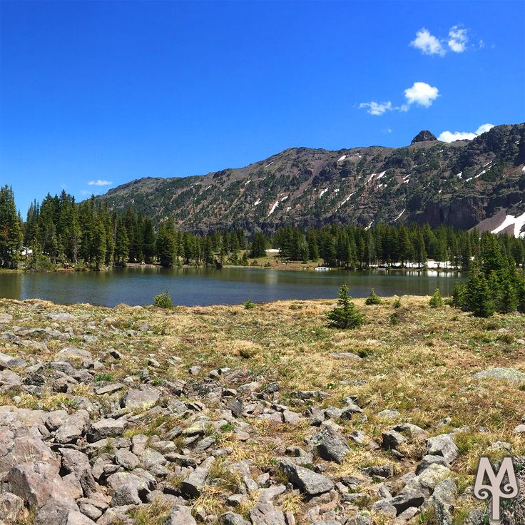 A great early Summer hike can be found on the Emerald Lake trail within minutes of downtown Bozeman, MT. Locate this photo on the Emerald Lake Photo Map link.
