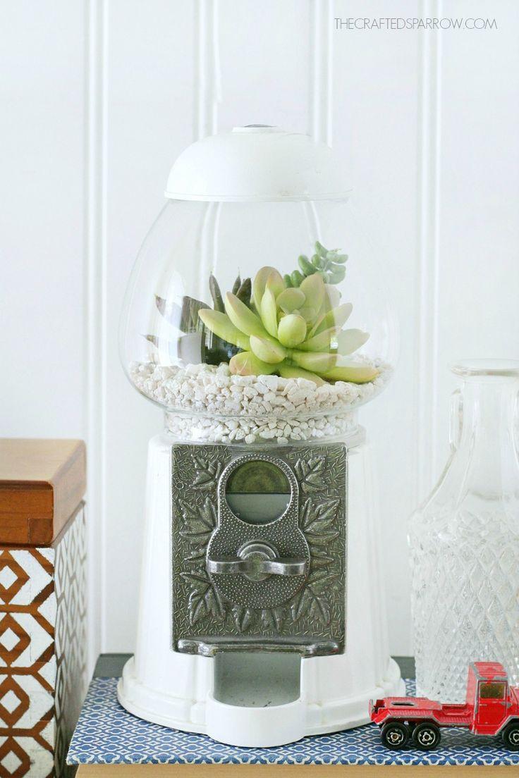This is a fun idea! Gumball Machine Succulent Planter