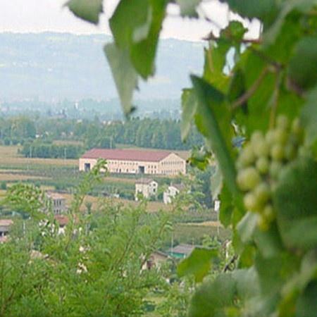 L'Azienda Perlage Wines