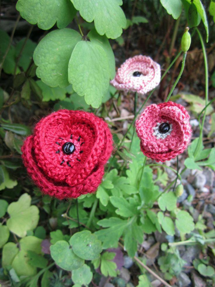 Knitting Pattern For Anzac Poppies : 78 mejores imagenes sobre Crochet - Poppies ! en Pinterest ...