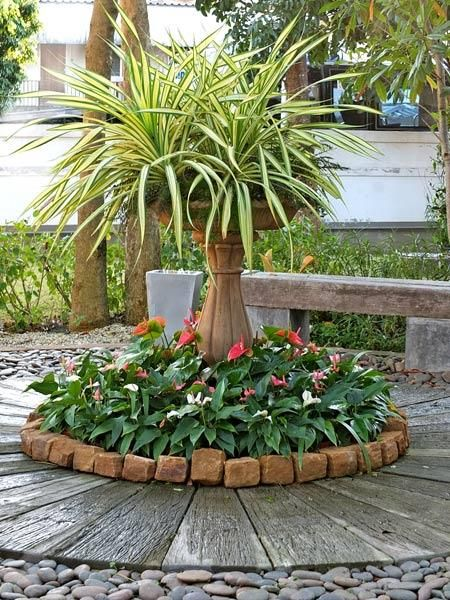 100  ideas to try about garden