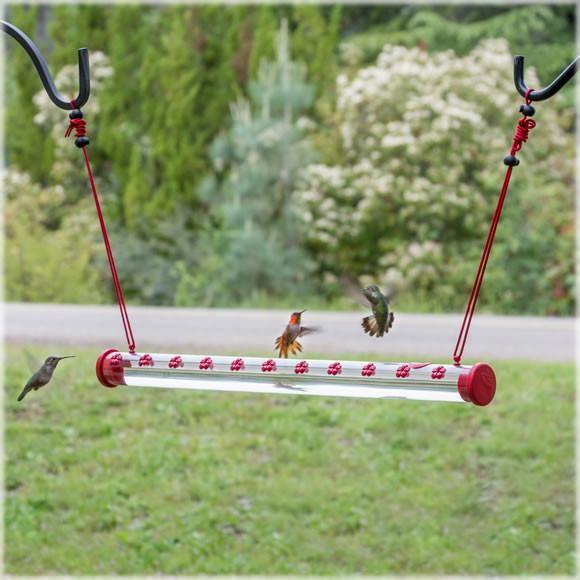 A whole new way to feed hummingbirds