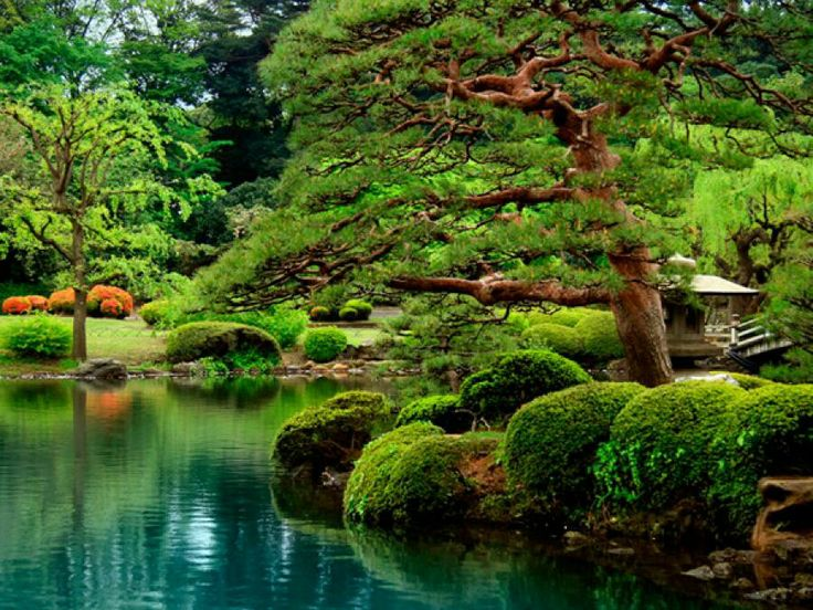jardines orientales