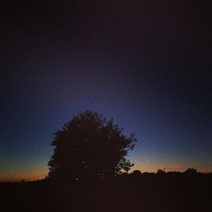 El anochecer en el campo siempre tiene otro sabor otro olor...     #igersvalencia #nature  #naturephotography #natureza #mayfair #tree #sky #black #blue #photooftheday