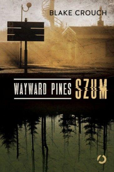 Agent specjalny Ethan Burke przybywa do Wayward Pines w stanie Idaho w poszukiwaniu dwóch zaginionych funkcjonariuszy. Tuż po tym, jak przekracza granice miasta, rozpędzona ciężarówka taranuje jego auto. Burke traci pamięć. Nie wie, kim jest i gdzie się znajduje. Szybko jednak zauważa, że w miastecz