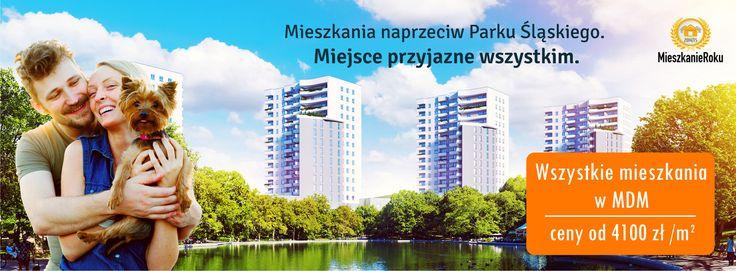 Mieszkanie naprzeciw Parku Śląskiego.