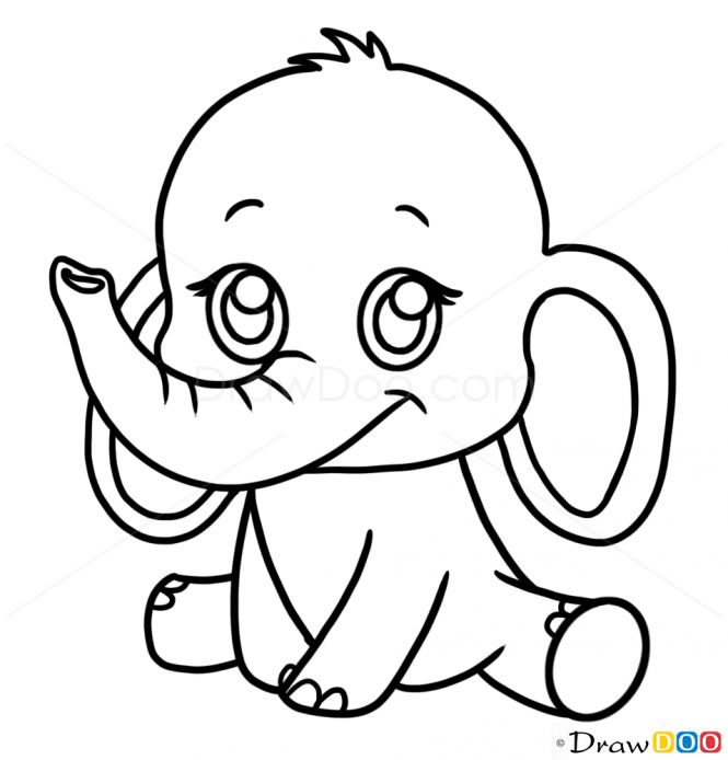how to draw a elephant - Google Search