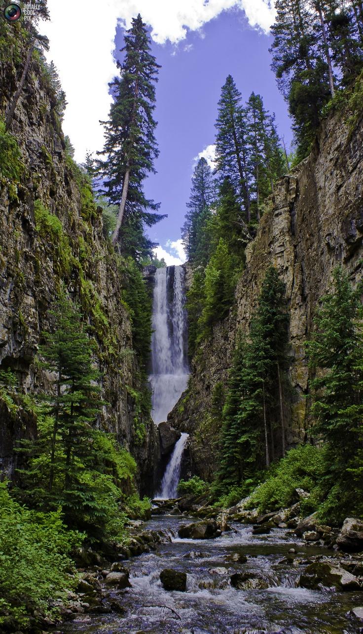 mountains waterfalls forest usa - photo #9